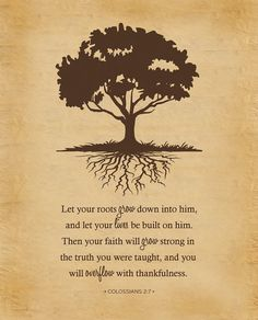 """Let your roots grow down into Him, and let your lives be built on Him. Then your faith will grow strong in the truth you were taught, and you will overflow with thankfulness."" Colossians 2:7"