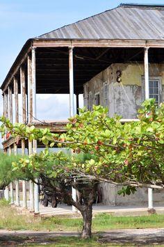 Old Naval Hospital - Port Royal, Jamaica