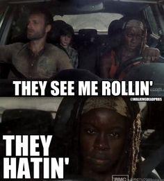 Michonne ~ The Walking Dead