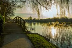 Henley On Thames, Barber, River, Explore, Country, Photography, Outdoor, Beautiful, Outdoors