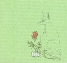 b.wilinska. wilk, róża i czosnek. 2012