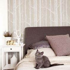 #regram @gamajos #woodswallpaper #petsandpaper #wallpaper #woods #catandwallpaper #greycat #kitten #pets #petstagram #grey #trees #treewallpaper #bedroom #bedroomdecor #homeinterior #homedecor #decorate #tapet #tapeter #behang #cat #decor #papierpeint #saturdaymorningfeeling