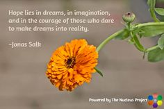 Jonas Salk quote - FREE Quote Images Now Available