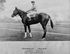 race horse sonador history | Donerail, 1913 Kentucky Derby