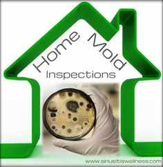 Home Mold Inspections: Easy do it yourself home test kits to locate & get rid of black or allergenic mold.