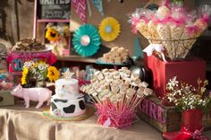 Western/Country Cowgirl Birthday Party Ideas   Photo 26 of 28   Catch My Party