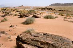 Als unwillkommene Gäste in Algerien. 1991 Manfred, Country Roads, Sun, Deserts, Pictures, Viajes
