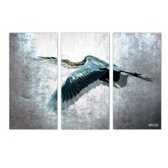 Found it at Wayfair - 'Heron Flight' by Bruce Bain 3 Piece Photographic Printt on Wrapped Canvas Set