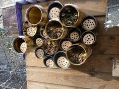 Nog een eenvoudig te maken bijenhotel. Je verzameld gewoon enkele blikken (liefst verschillende maten), die je tegen een houten wand of plank bevestigd met schroeven . Daarna vul je ze op met bamboe- of andere holle stengels....#DIY