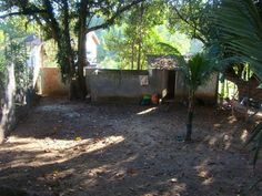 Visão do canil, que antes ficava fechado, mas agora permanece aberto servindo de abrigo do frio e da chuva para os cães.