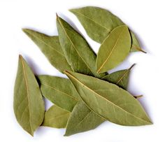 Laurel Leaves (Bay Leaves) Whole - Lydian Global Sourcing Inc. Natural Cures, Natural Healing, Bay Leaf Tea, The Growers Exchange, Bunion Remedies, Trees To Plant, Plant Leaves, Laurus Nobilis, Herbs