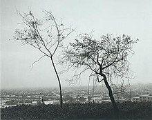 Robert Adams - On Signal Hill, Overlooking Long Beach, 1983