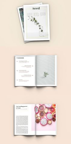 Seed - A4 Magazine Template #brochure #template #indesign #magazine #lookbook #portfolio #catalog