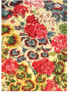 Gertrude cotton fabric by Philip Jacobs
