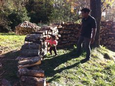 Helping stack wood.