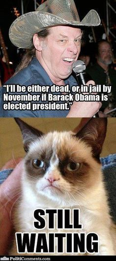 grumpy cat political memes with ted nugent   Ted Nugent: I'll be either dead, or in jail by November if Barack ...