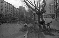 Calle Burgos de Santander - año 1966 - eldiariomontanes.es
