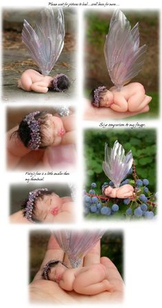 Darling infant fairie