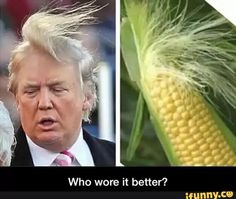 Crap! No more corn on the cob for me☹️ Now every time I see it or tRump...