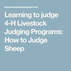 Learning to judge 4-H Livestock Judging Programs: How to Judge Sheep