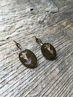 Real Abelia flower earrings  #thetinytwig Flower Earrings, Stud Earrings, Druzy Ring, Shopping, Jewelry, Jewlery, Bijoux, Ear Gauge Plugs, Jewerly