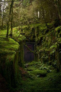 """mydododied: """"The door """""""