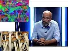 Dr. Zacher Gábor toxikológus a drogokról érthetően (2. rész) - YouTube Ha, Gabor, Youtube, Painting, Painting Art, Paintings, Painted Canvas, Youtubers, Youtube Movies