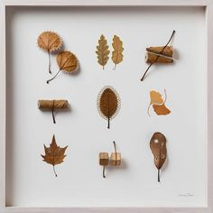 UK-based artist Susanna Bauer combines found natural objects such as leaves, stones and small pieces of wood with crochet embellishments to create delicate works of art. Flora Flowers, Dried Flowers, Colossal Art, Small Sculptures, Textiles, Dry Leaf, Graphic Design Print, Leaf Art, Photo Projects