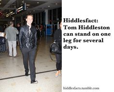 Hiddlesfacts