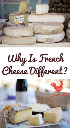 How can French people eat so much cheese and still be healthy? Well, French cheese is different! There are plenty of reasons to love & enjoy French cheese. French Cheese, French People, Cheese Pairings, Types Of Cheese, People Eating, French Food, Kefir, Natural Cures, Sour Cream