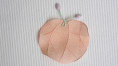 모시연잎받침 / 산호색