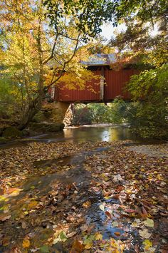 Red covered Bridge in fall, South Carolina by John Reddy -photographer.