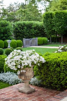 Eve wanted white petunias for her wedding bouquet; later on, Roarke has their garden urns filled with petunias just for her. Moon Garden, Dream Garden, Formal Gardens, Outdoor Gardens, Modern Gardens, Japanese Gardens, Landscape Design, Garden Design, Garden Urns