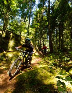 Mountain Biking How To Become Trail Profile User