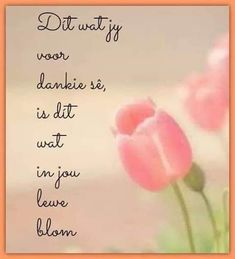 Afrikaanse Inspirerende Gedagtes & Wyshede: Dit wat jy voor dankie se, is dit wat in jou lewe blom Qoutes, Life Quotes, Afrikaans Quotes, Friendship Quotes, Verses, Words, Inspiration, Biblical Inspiration, Dating