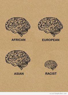 Le Cerveau d'un Africain, d'un Européen, d'un Asiatique et le Petit Cerveau d'un Raciste