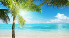 Best Of Wallpaper Beach Tropical Beach Background Images pictures - Wallpaper Themes