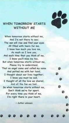 Losing A Dog Quotes Grief Rainbow Bridge Pet Loss I Love Dogs, Puppy Love, Pet Loss Grief, Loss Of Pet, Dog Poems, Pet Remembrance, Animal Quotes, Pet Memorials, I Am Awesome