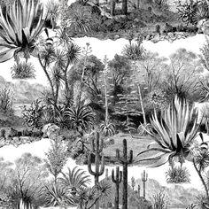 Papier peint fresque du désert de cactus