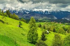 Národný park Piatra Craiului Stunning Summer, Green Fields, Summer Landscape, Natural Wonders, Around The Worlds, Europe, Mountains, Park, Nature
