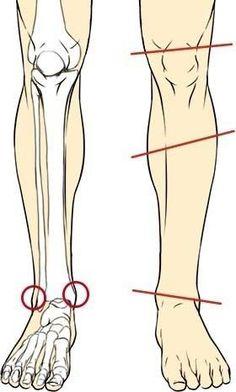 How to Draw Legs (Lower Leg Construction/Angles) Leg Anatomy, Anatomy Poses, Anatomy Art, Figure Drawing Reference, Anatomy Reference, Art Reference Poses, Leg Reference, Drawing Legs, Body Drawing