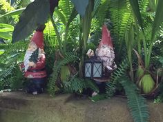 Gnome Away from Home, Garfield Park Conservatory