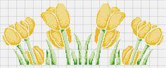 tulipani+gialli+(2).JPG 1.600×664 piksel
