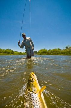 How to Choose Leaders and Tippets when Fly Fishing | Field & Stream