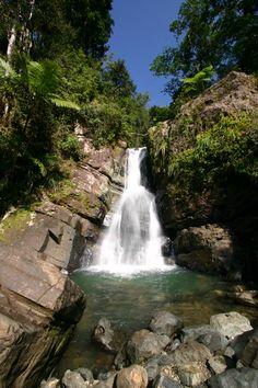 La Mina falls in El Yunque rainforest, Puerto Rico.