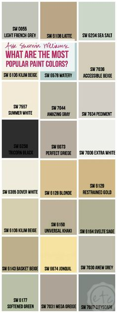 What are the most popular paint colors? Color palettes
