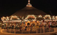 "Carousel at Barefoot Landing.  I used to call them ""Merry-Go-Rounds""...."