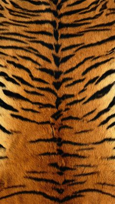 Tiger Skin all-over printed Mens T-Shirt by Yizzam. Made in the USA with the finest quality fabrics and enviro-safe dyes. Make your style shine! Ipad Mini, Tiger Skin, Animal Print Wallpaper, Running Costumes, Black Tigers, Thrift Fashion, Yellow Black, Alternative Fashion, Branded T Shirts