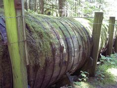 Wooden Water Pipe about 5' in diameter, once took water from Nooksack Creek, Washington. Since replaced with steel