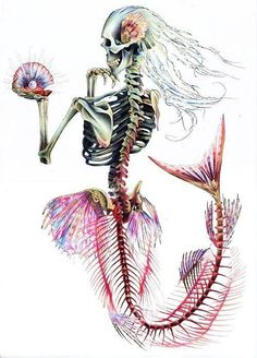 Mermaid Skeleton Print This is a print of an original drawing created using colouring pencil and ink. The image measures approx. 8 x 10 The image Mermaid Skeleton, Skeleton Art, Halloween Mermaid, Skeleton Tattoos, Skeleton Bones, Human Skeleton, Totenkopf Tattoos, Mermaid Art, Tattoo Mermaid
